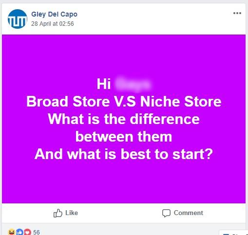 Niche Vs. General store section